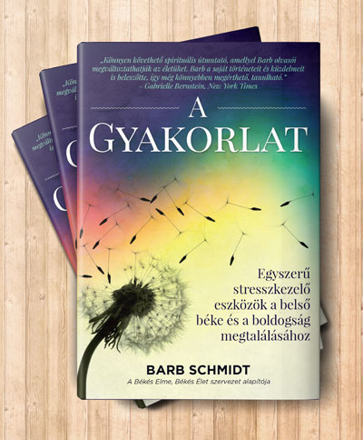 meditacio-konyv-tudatossag-a-gyakorlat-barb-schmidt